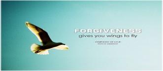 Forgive-Fly