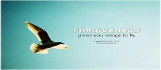 Forgive-Fly