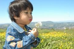 dande+child